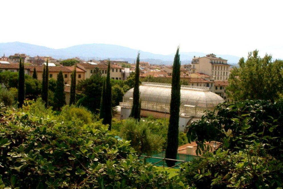 Giardino dell 39 orticoltura florence attractions review - Giardino dell orticoltura firenze ...