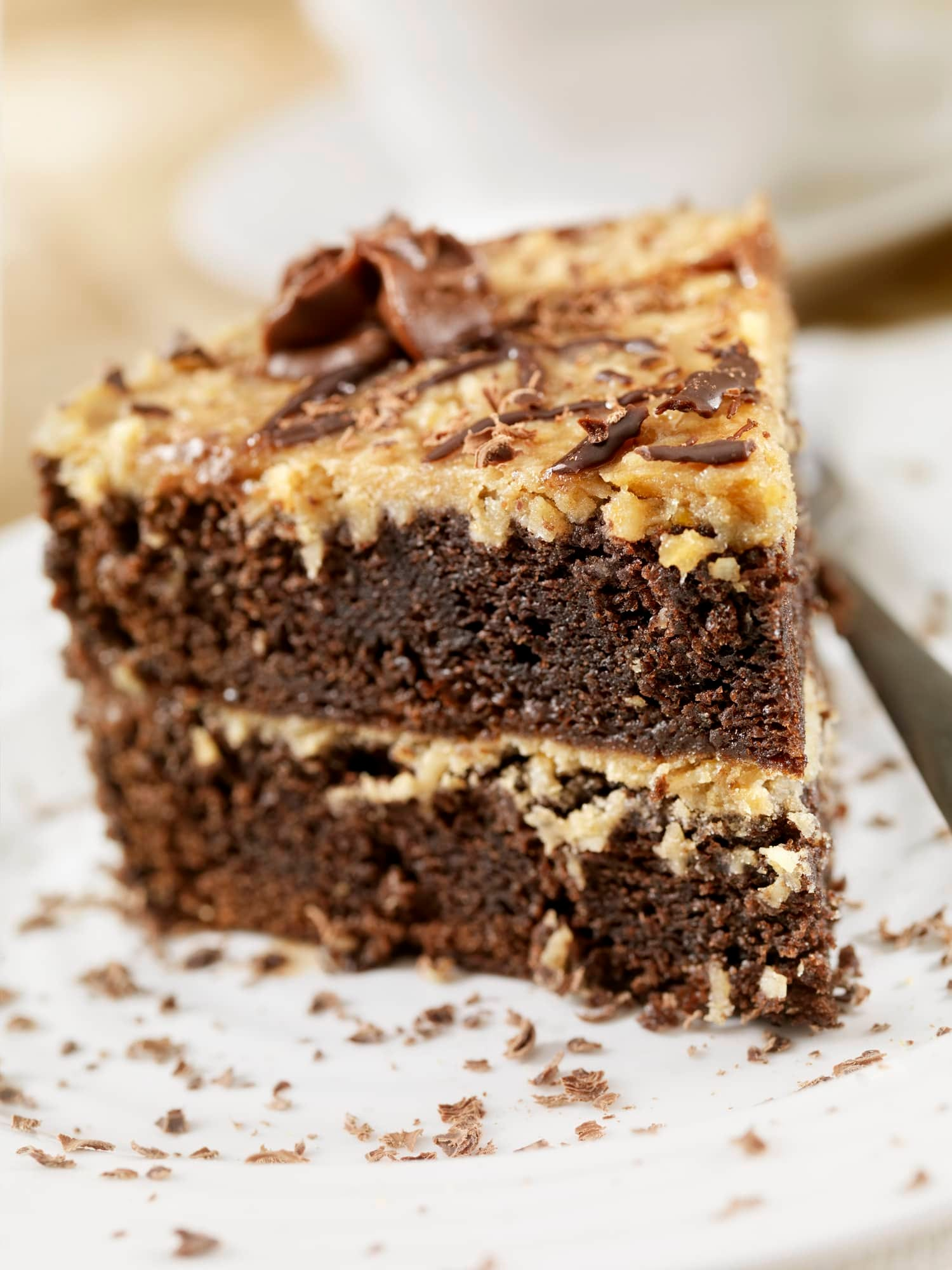 German Chocolate Cake with a Coconut Icing-Photographed on Hasselblad H1-22mb Camera